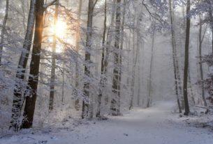 Natale in Casentino, un viaggio tra le realtà del cambiamento