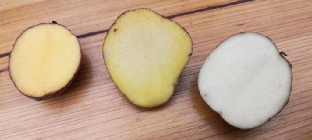 Patate di Montagna2