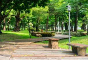 Restauro Ambientale Sostenibile: il bando per valorizzare la tua città!