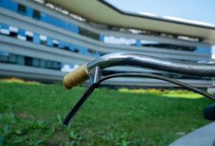 L'Università di Torino ai primi posti per la sostenibilità ambientale