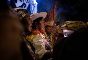 Rivelazioni degli attivisti sui crimini ambientali in Brasile