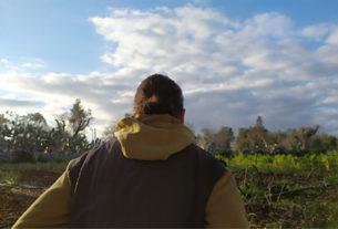 Cesare, il contadino che vuole salvare il Salento dalla desertificazione