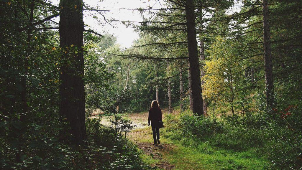 camminare natura