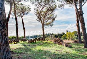 Aspiranti agricoltori: al via la formazione gratuita sulle terre pubbliche di Roma!
