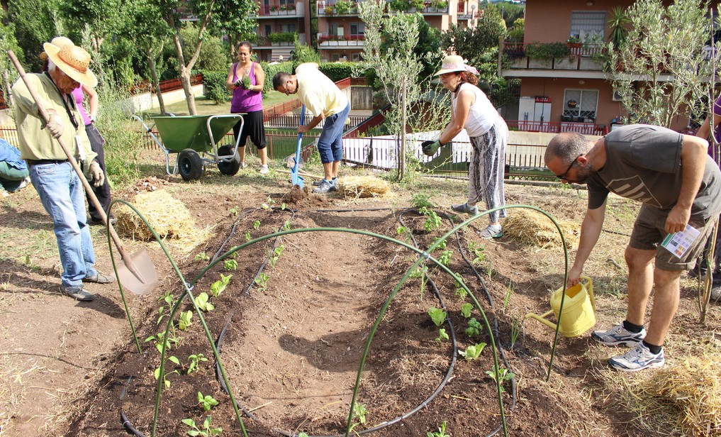 foto gardeniser