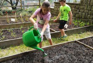 Il valore educativo dei giardini scolastici