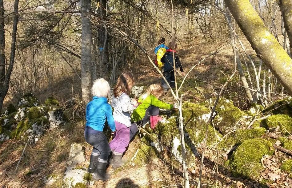 scuola bosco trento