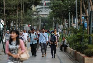 Quel legame strettissimo tra pandemie e perdita di natura