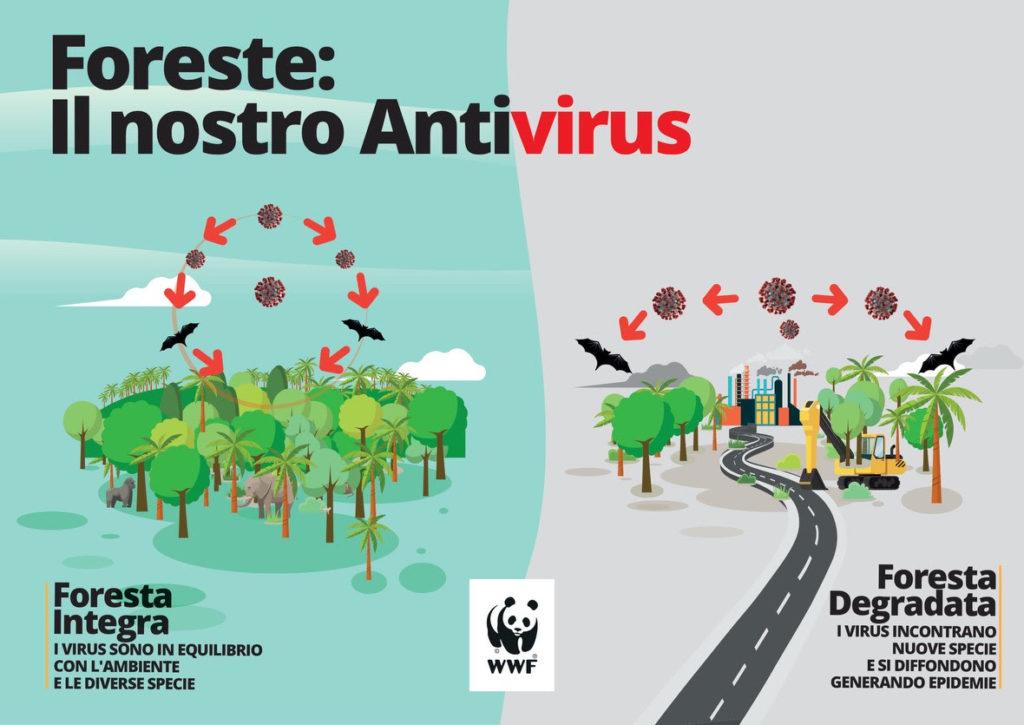 foreste antivirus pandemie