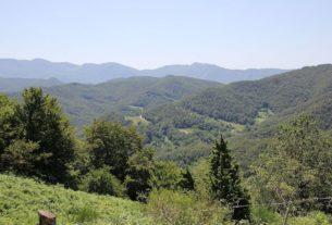 Il Parco Nazionale delle Foreste Casentinesi fra i primi 50 al mondo