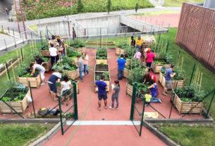 Innesto, l'orto urbano che riqualifica la periferia educando al verde
