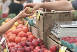 Agricoltura contadina e filiera corta possono salvarci. Ma riusciranno a salvare se stesse?