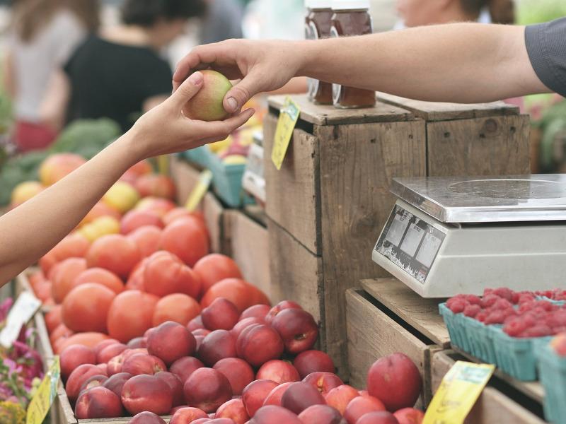 [fonte: https://www.italiachecambia.org/2020/05/agricoltura-contadina-filiera-corta-possono-salvarci-riusciranno-salvare-se-stesse/]