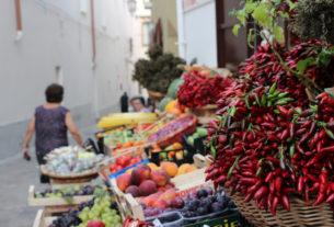 Dal biologico all'ecoturismo: le proposte urgenti per far ripartire il Sud e la Calabria