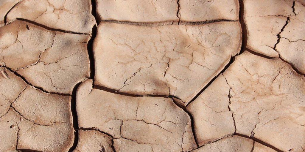 Suolo arido e privo di vegetazione, una delle conseguenze del riscaldamento globale