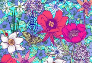 Herbarium vagans: la mostra itinerante di botanica sulle erbe di montagna