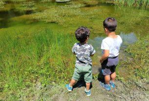I campi estivi di Altopia: la casa del cambiamento apre le sue porte ai bambini!
