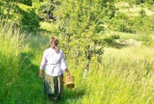 Le erbe spontanee: una ricchezza da riscoprire e tutelare