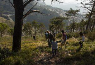 Mille alberi piantati dai cittadini per difendere il territorio