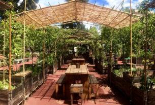 Orti Dipinti, il giardino condiviso che coltiva socialità e consapevolezza