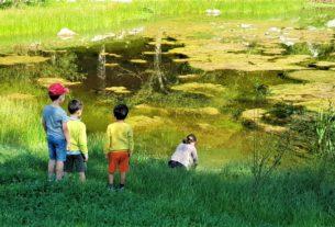 Estate bimbi ad Alto: resoconto di un campo solare in natura