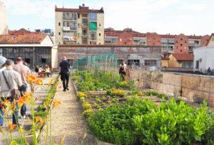 #56 – OrtiAlti: come l'agricoltura urbana può trasformare tetti delle nostre città