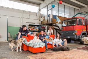 Progetto Pandora: un capannone industriale diventa casa famiglia per cani