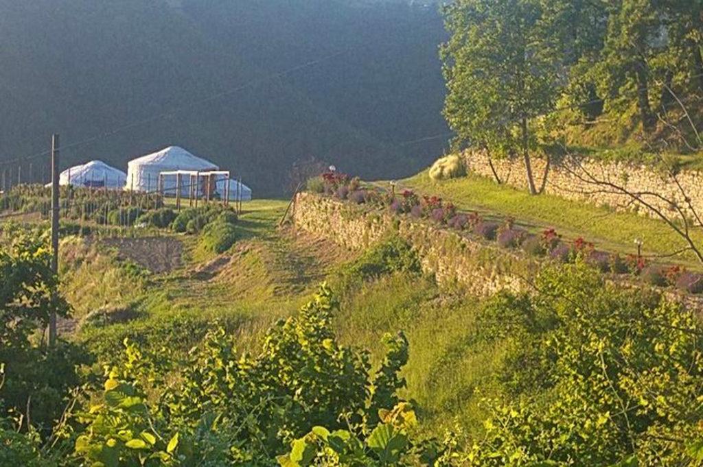Yurte in Langa3