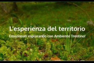 Ambiente Trentino