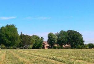 Azienda Agricola Cà Ridolfi
