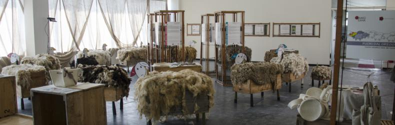 Biella The Wool Company