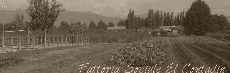 Bottega sapori e saperi della legalità- Treviso