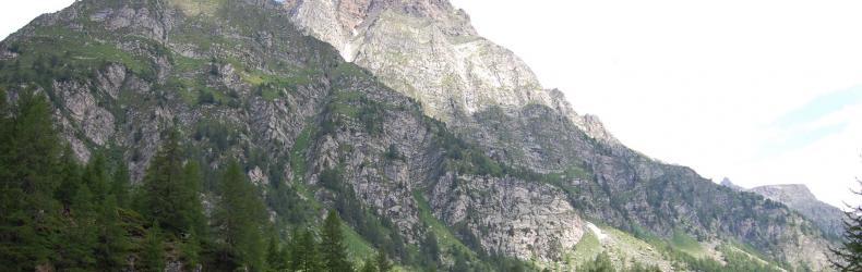 Canapa Alpina
