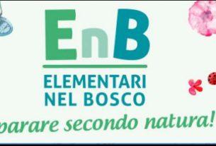 Elementari nel Bosco-Firenze