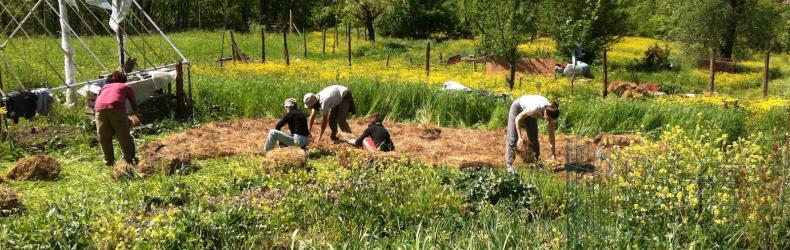 Fattoria giardino orto condiviso