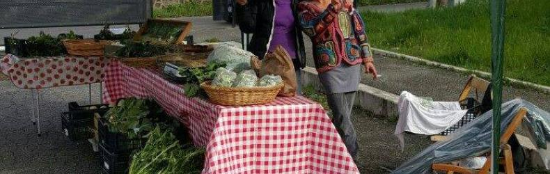 Mercatino contadino Bricchiorto e Ortoggi