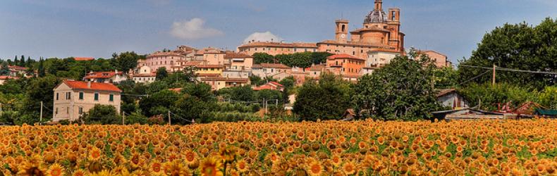 Monte San Vito (AN)