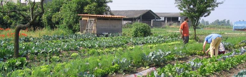 Scuola di pratiche sostenibili