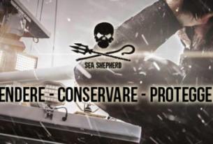 Sea Shepherd Italy