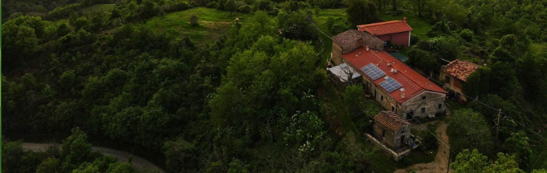 Tertulia Forest Coliving Coworking