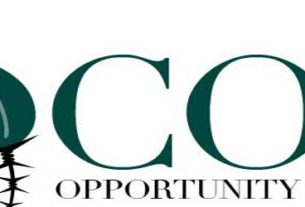 The CO2 Crisis Opportunity Onlus