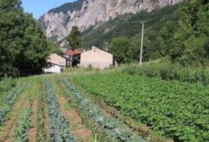 Germinale Cooperativa Agricola di Comunità