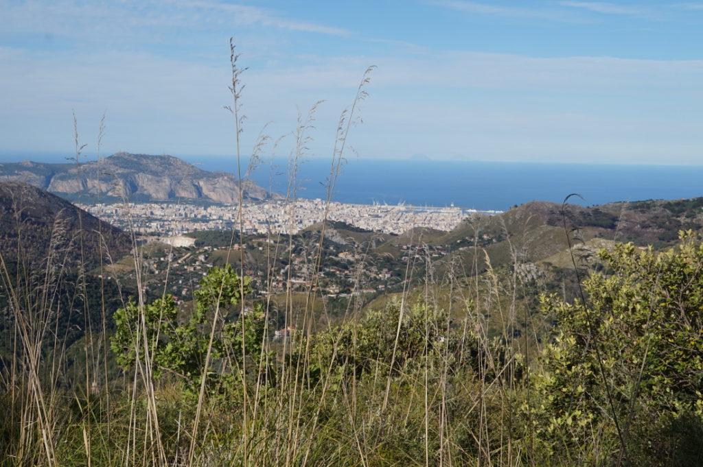IT.A.CA Palermo