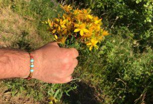 L'erboristeria intuitiva, un approccio che coniuga le erbe con la scoperta di sé