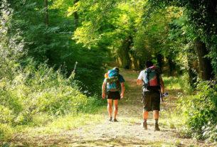 Progettare itinerari e cammini: un corso per valorizzare il turismo lento