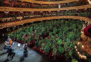 Il concerto degli artisti per le piante sbarca a Venezia 77