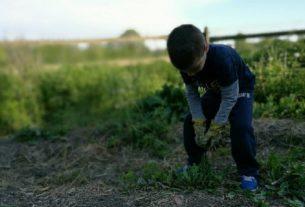 In Veneto crescono le comunità sostenibili