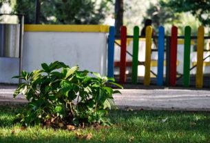 """""""Usiamo cortili e giardini scolastici come aule all'aperto"""""""