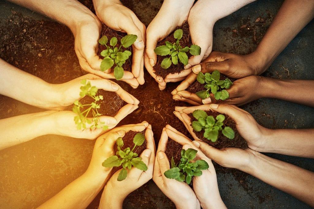Cerco persone per progetto di ecovicinato e nuovo ecovillaggio