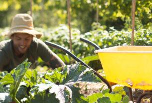 Sebastiano, il giovane contadino che per cambiare il mondo coltiva la terra